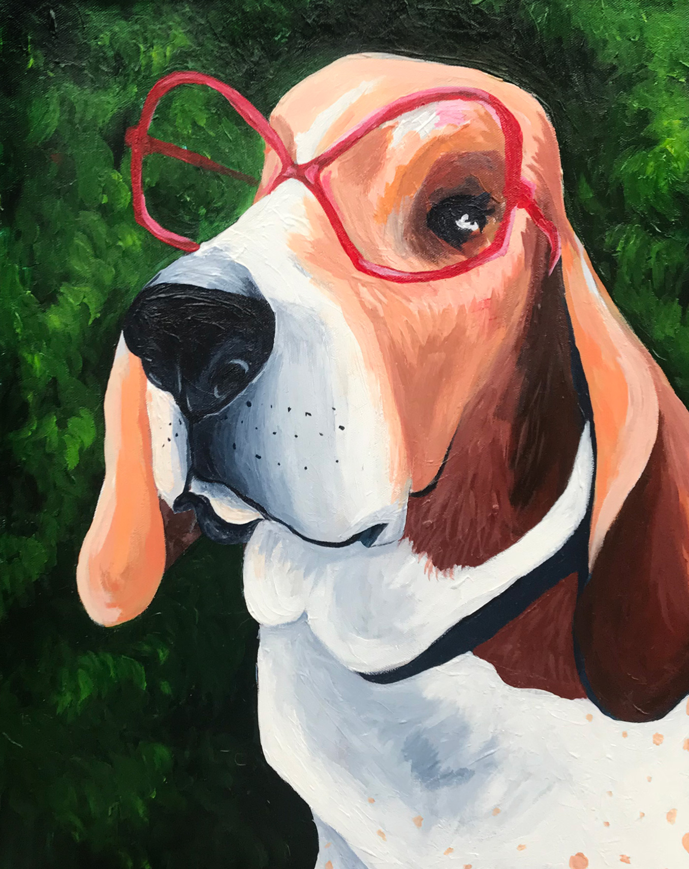 Basset Hound Pet Portrait