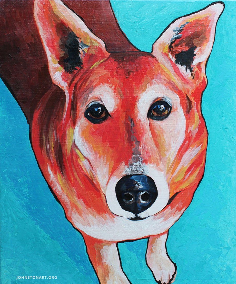 Sadie the Dog Pet Portrait by Jessica J Johnston